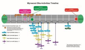 wynwood-timeline